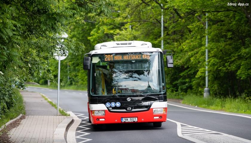 DPP autobus