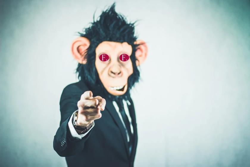 finanční správa monkey